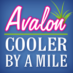 Visit Avalon, NJ